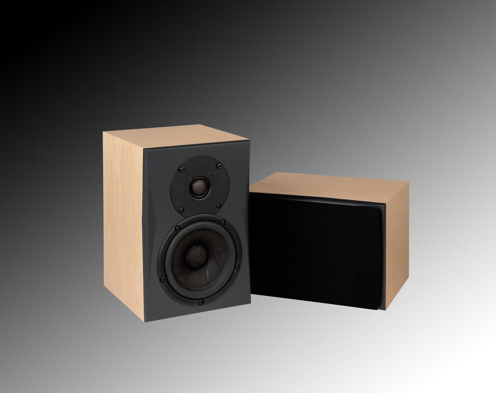 Triad Speaker In-Room Silver MiniMonitor