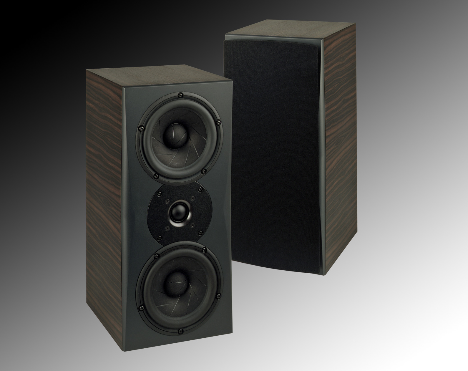 Triad Speaker In-Room Silver Monitor